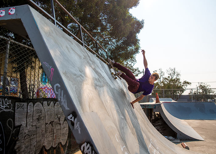 Bonzing Big Dog Skateboard